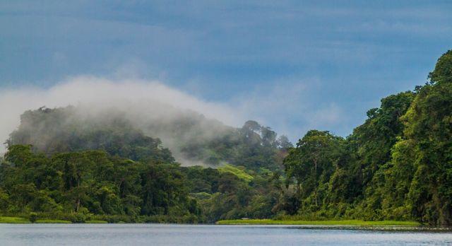Misty morning at Tortuguero
