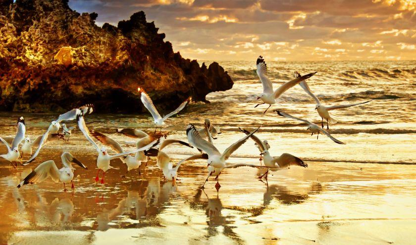Enchanting Travels Australia Tours - Two Rocks Sunset - Perth Australia - Best trips to take in 2020