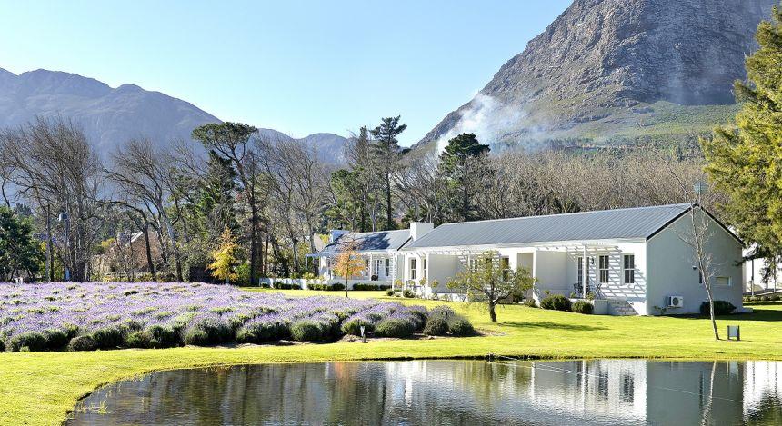 Enchanting Travels South Africa Tours Cape Winelands Hotels Lavender Farm Guest House Grounds