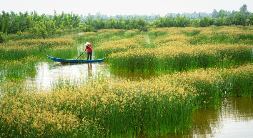Halong Bay or Mekong Delta: Mekong