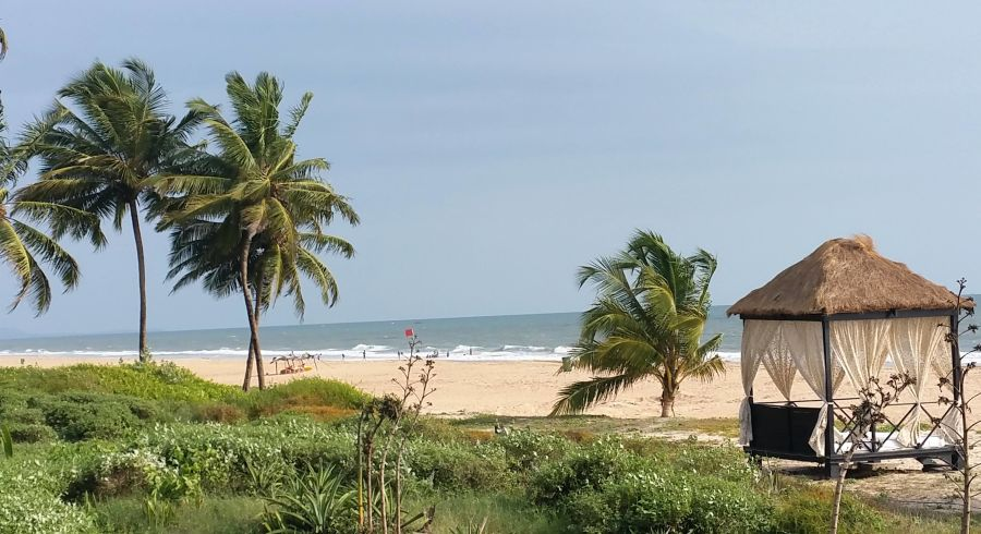 Palmen, Strand und Meer in Goa