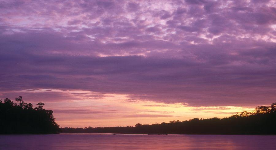 Sonnenuntergang im Amazonas-Regenwald