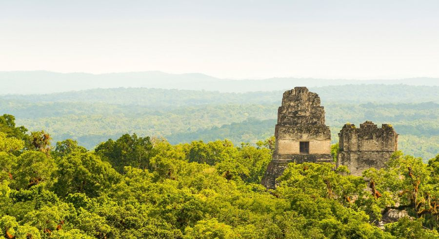 Enchanting Travels Guatemala Tours Tikal ruins in Guatemala with thick tropical jungle