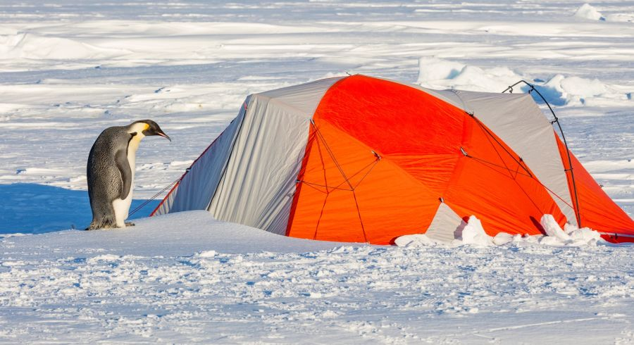 Camping out overnight in Antarctica