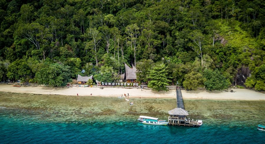 Rainforest in Sumatra, Indonesia - Enchanting Travels Top 10 UNESCO World Heritage sites of 2019