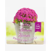 Bath and Body Works Bright Autumn Blooms Whipped Body Butter 185g