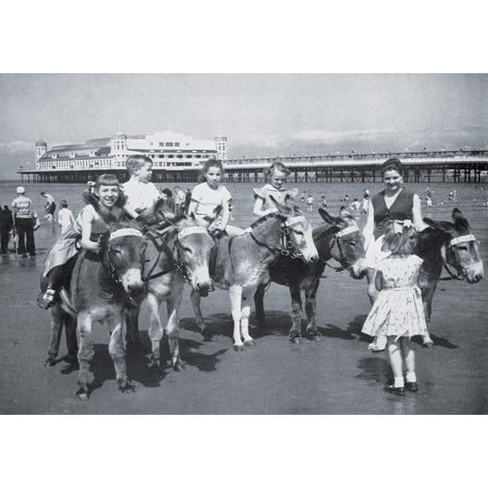 Kids on Donkeys  - A4 (210 x 297mm)