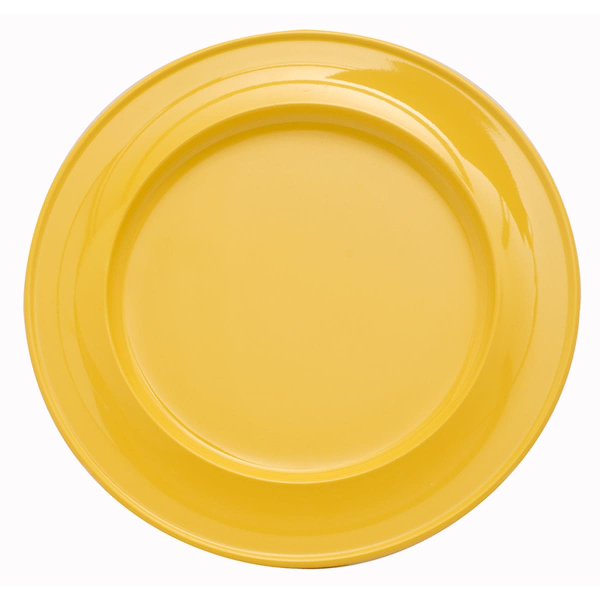 "10"" Find Dining melamine coloured dinner plate for dementia and alzheimers care"