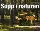 Sopp i naturen