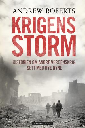 Krigens storm