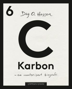 C - Karbon
