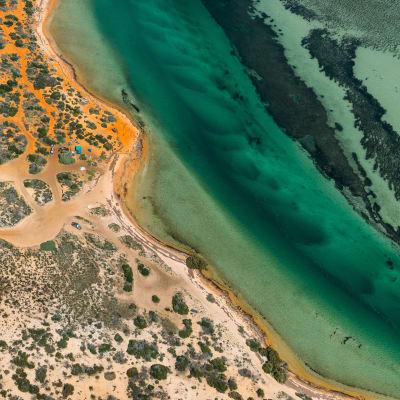 Shark Bay World-Heritage Area
