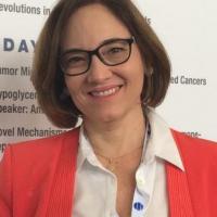 Dra. Cristina Figueiredo