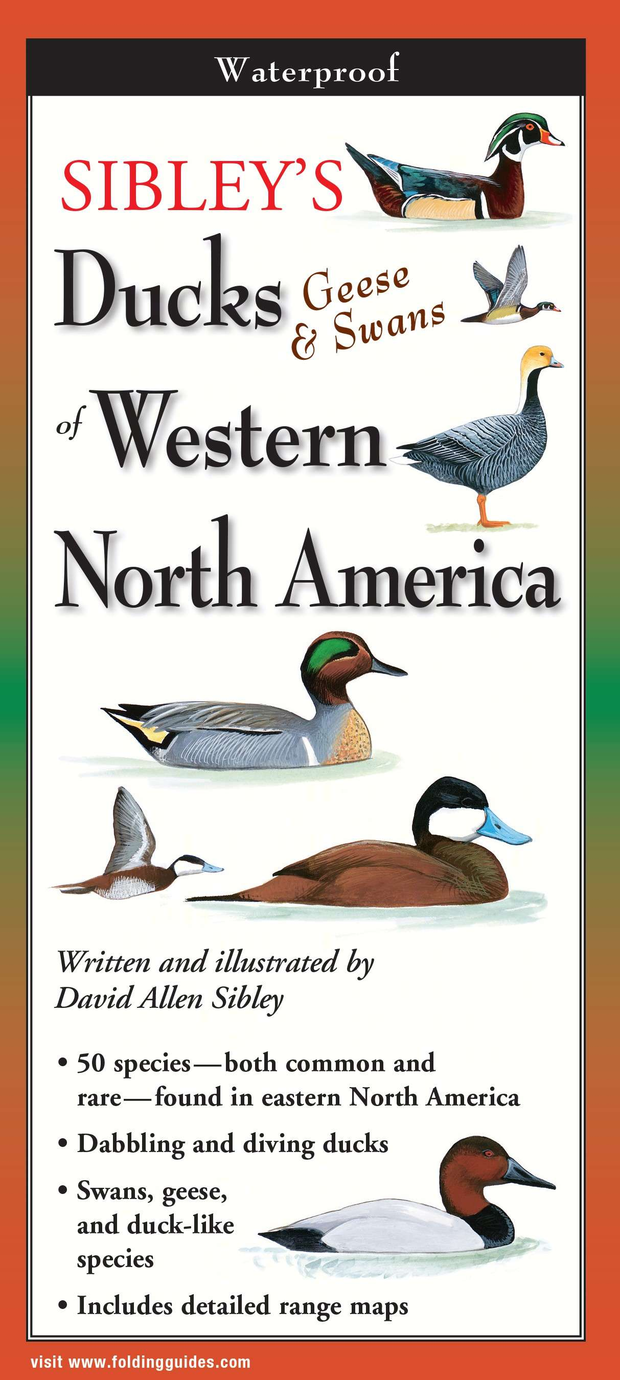 Sibley's Ducks, Geese,& Swans of Western N.A. - Quantity 1