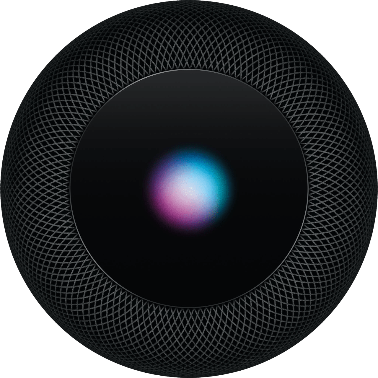 Space Grey Apple HomePod.2
