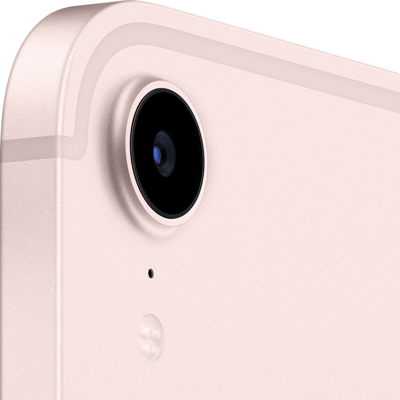 Rosa Apple iPad mini (2021) - WiFi - iOS 15 - 256GB.4