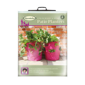 Strawberry and Herb Patio Planters