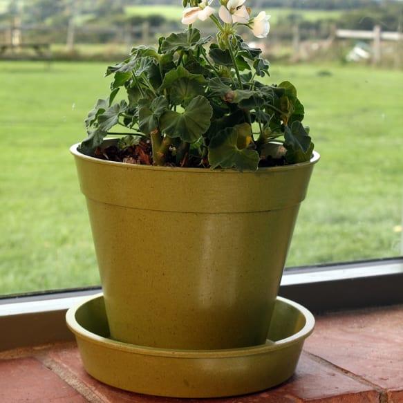 """8"""" Bamboo Pots - Sage Green"""