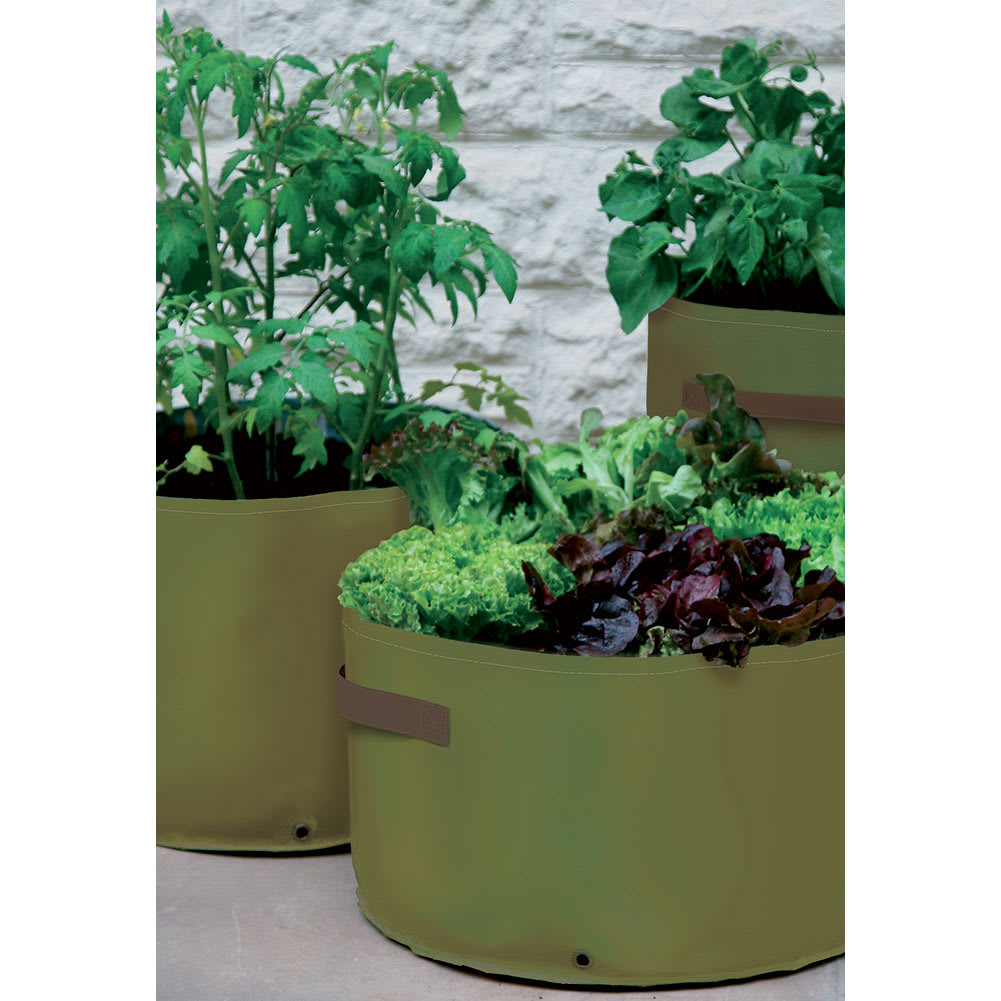 patio products garden gardening planter web tierra haxnicks herb use in planters both strawberry