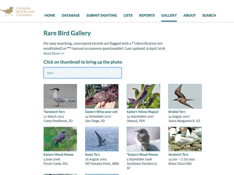 Re-design of CBRC website