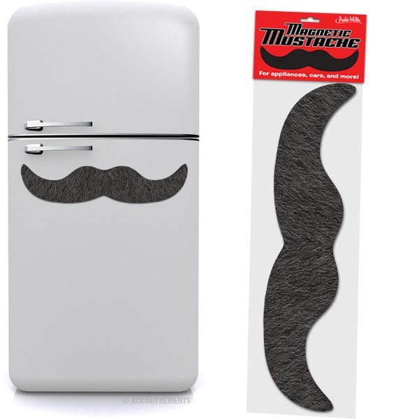 Large Magnetic Mustache