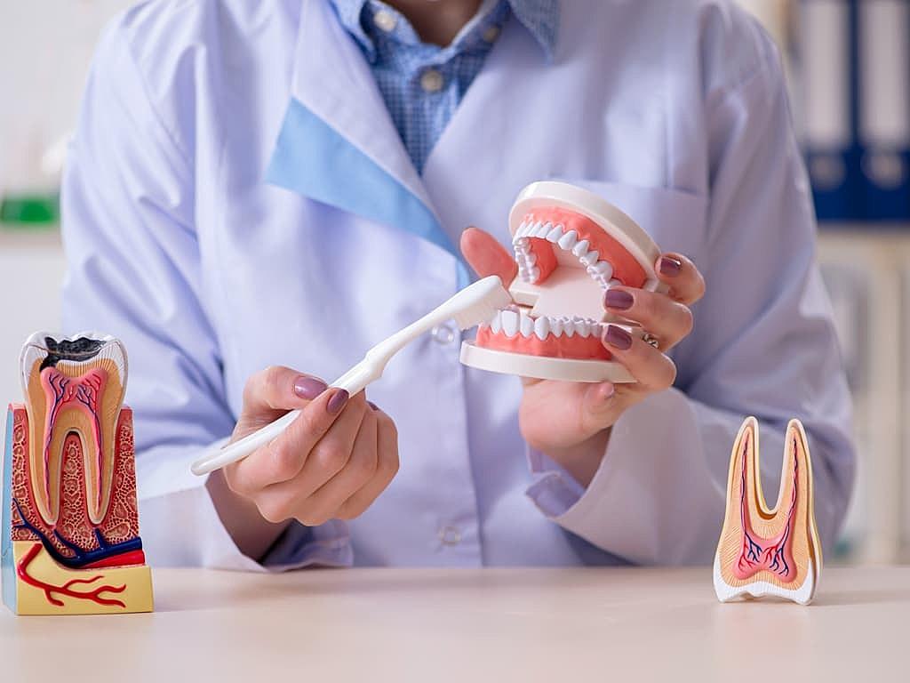 lecon_d_hygiene_dentaire_par_dentiste