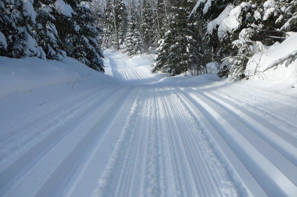 Top 5 Longest Cross Country Ski Trails in Minnesota