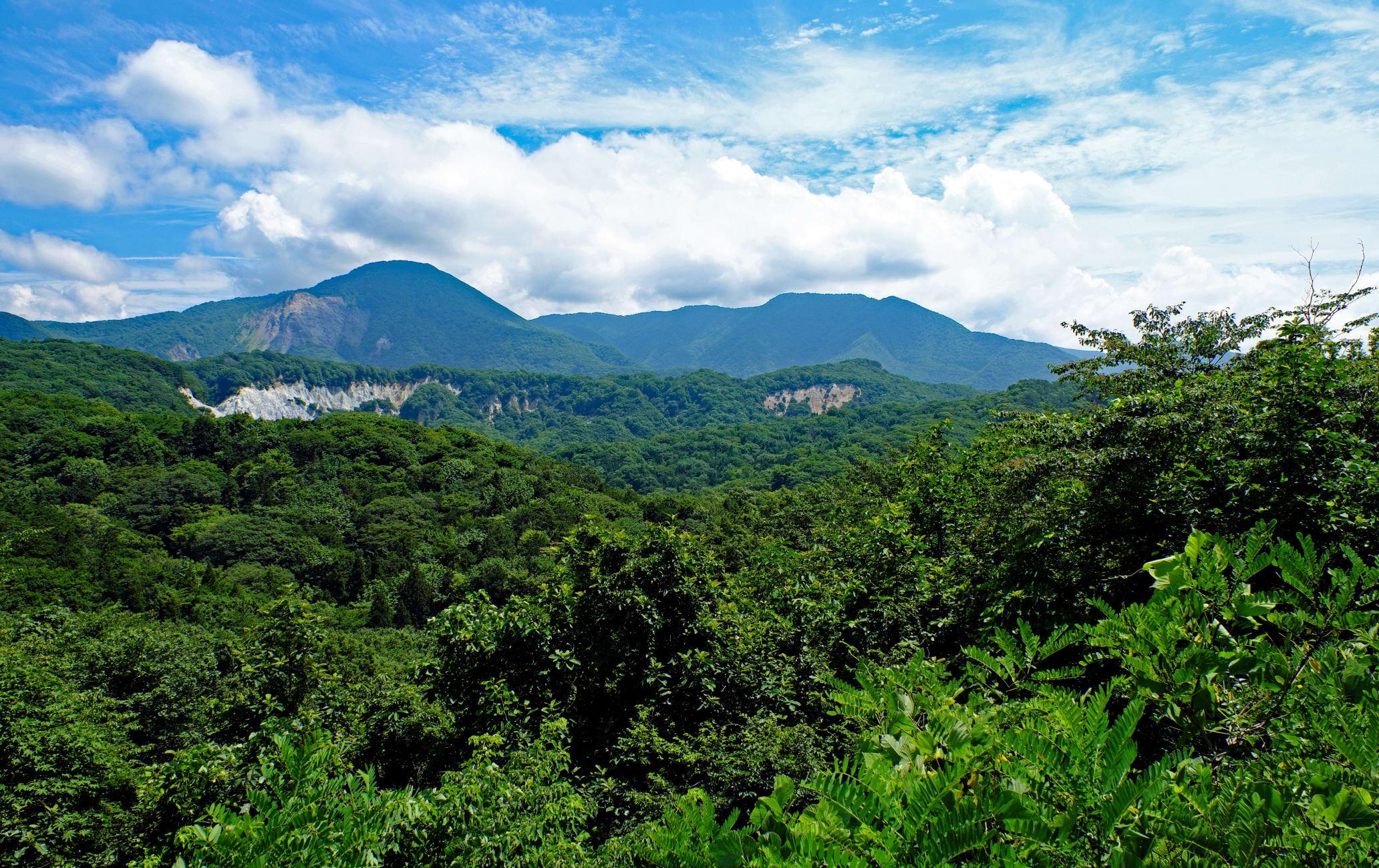 Aomori Shirakami Area