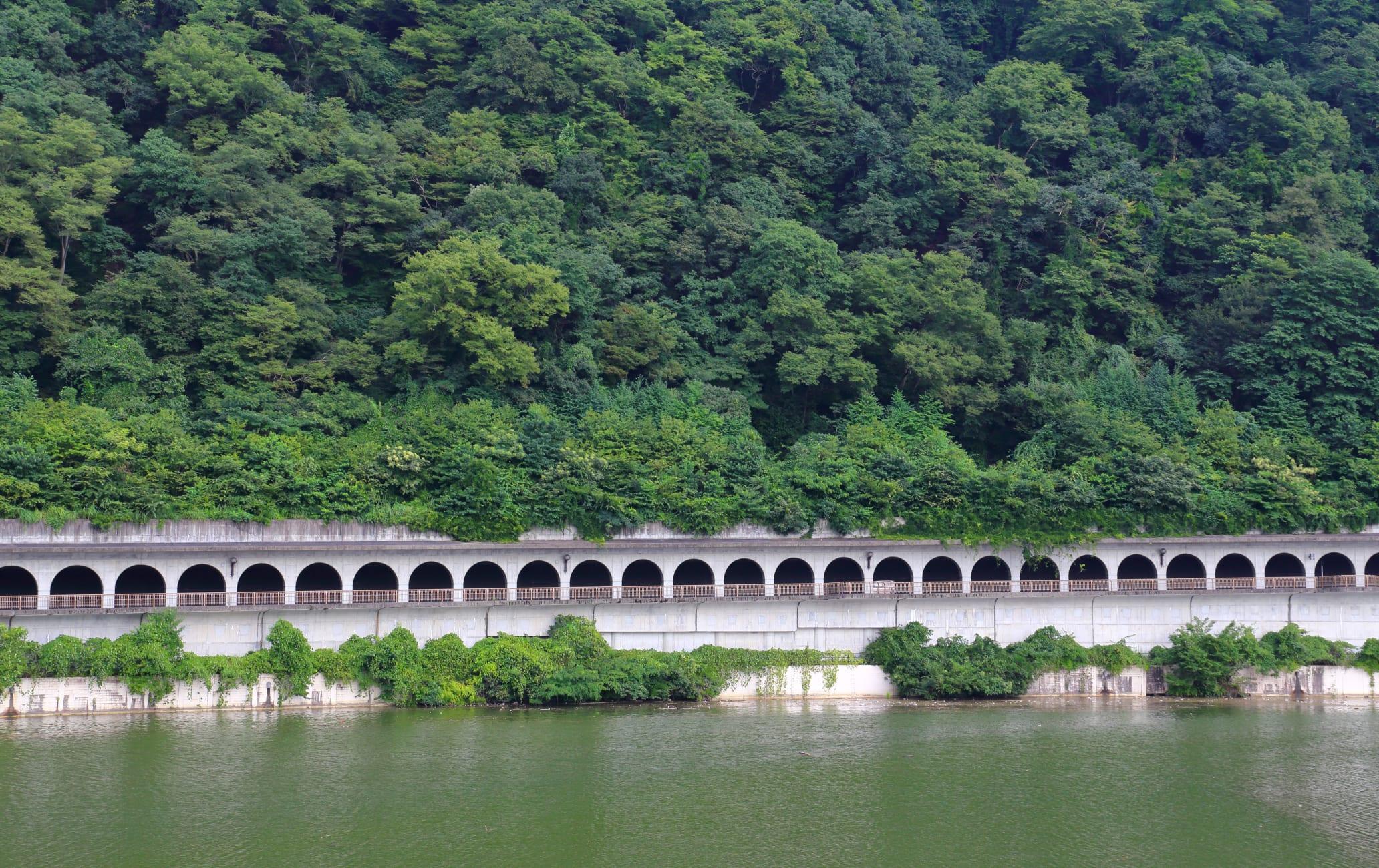 Lake Sagami-ko Area