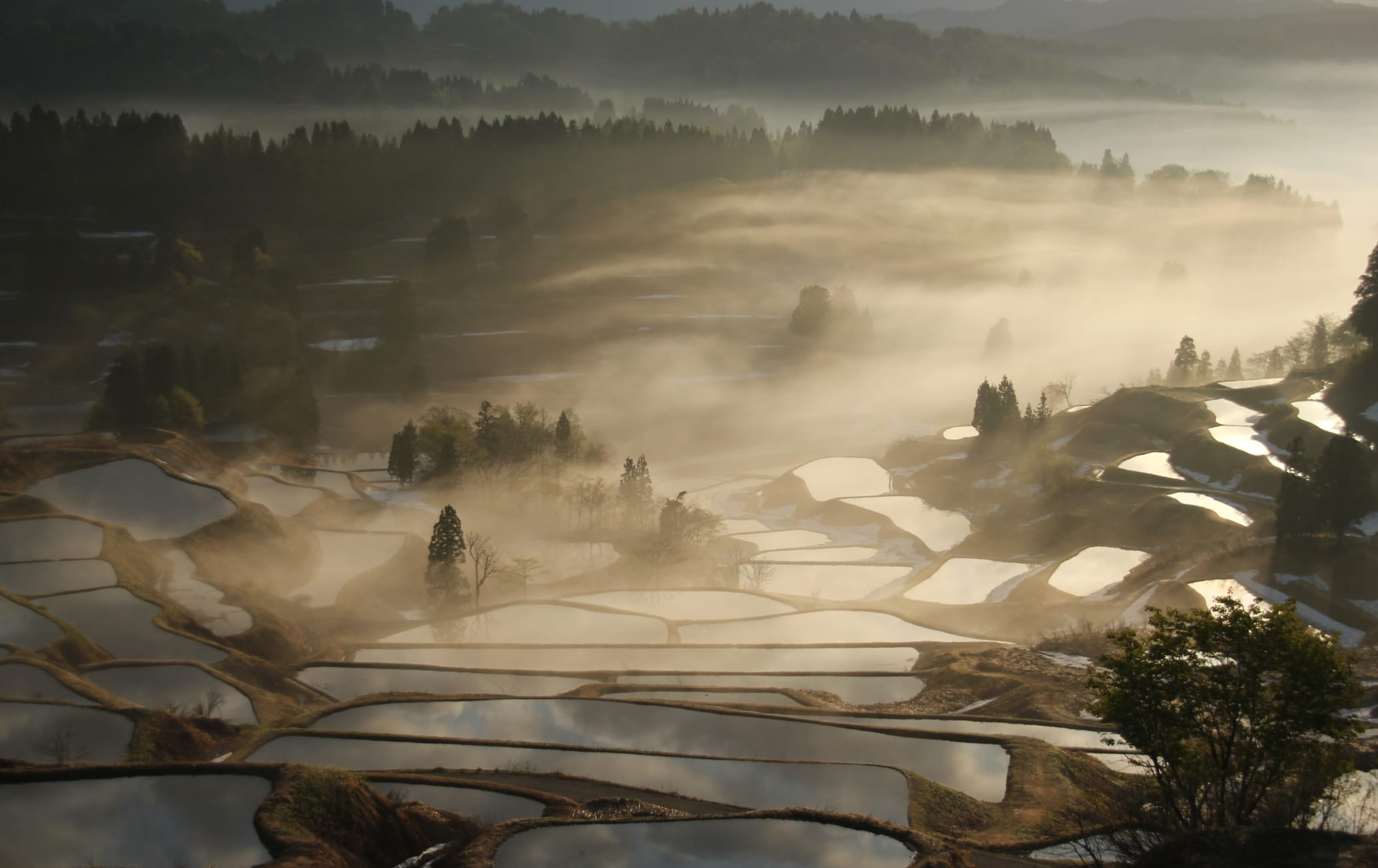 The terraced rice fields of Hoshi-toge