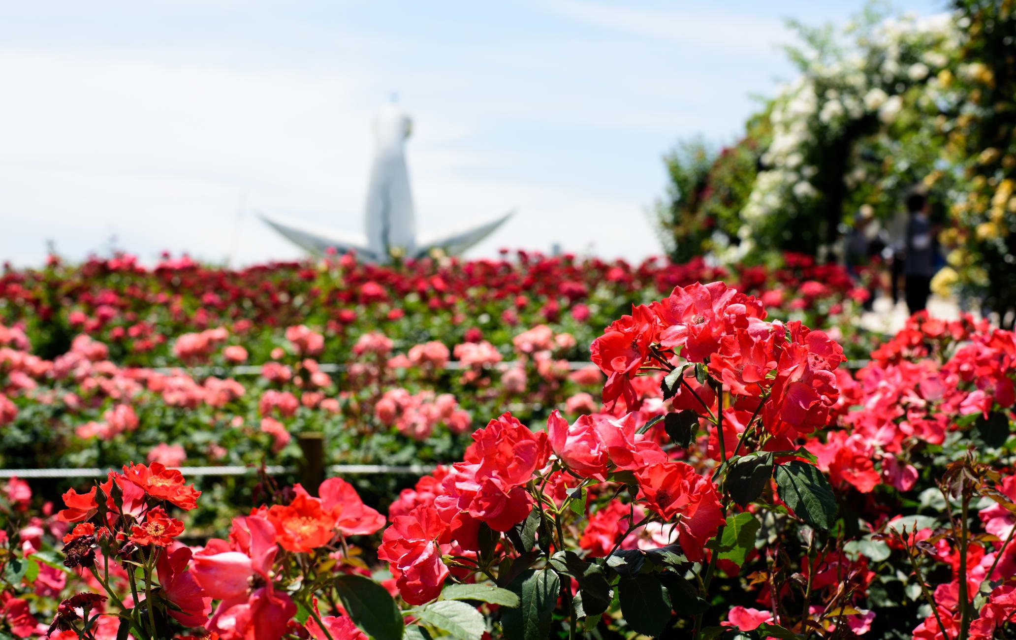 Expo Memorial Park