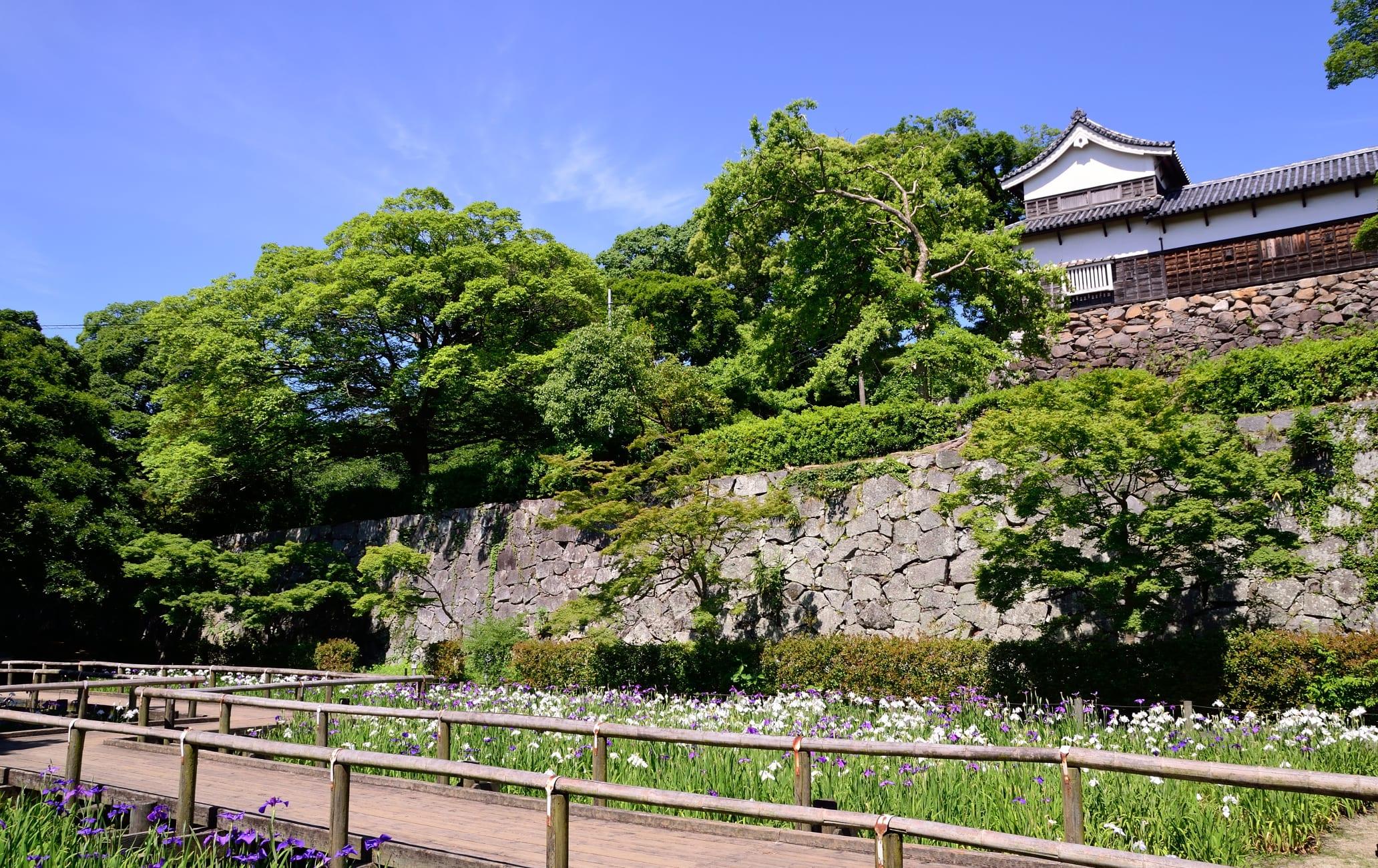 Fukuoka Castle-Maizuru Park