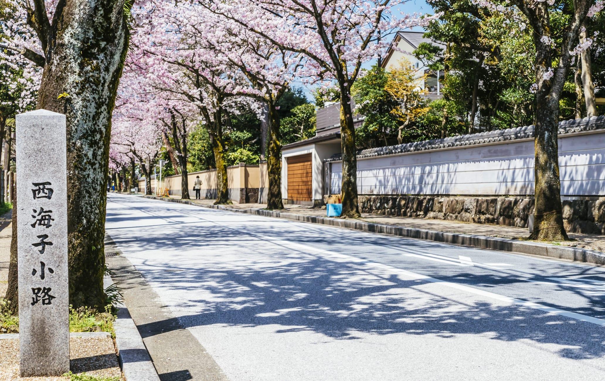 Odawara Area