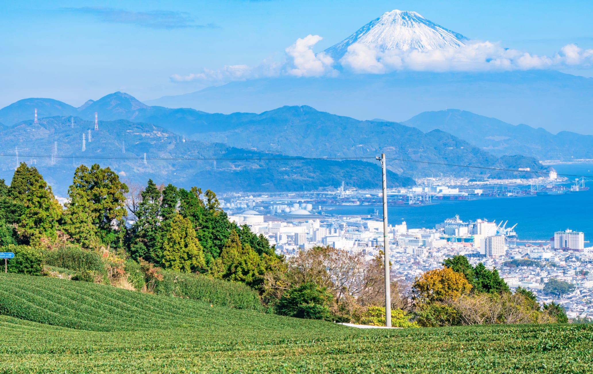 Nihon-daira Plateau Area