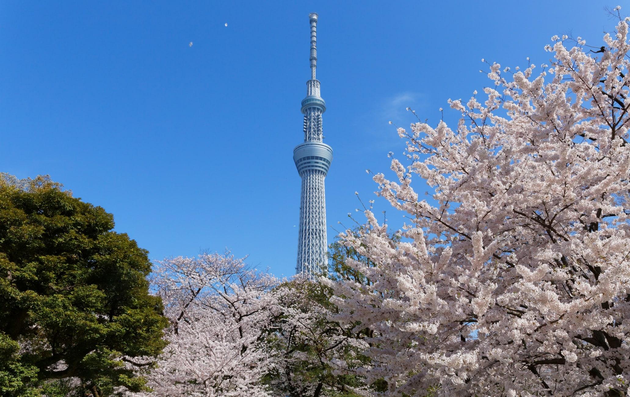 Sumida Park
