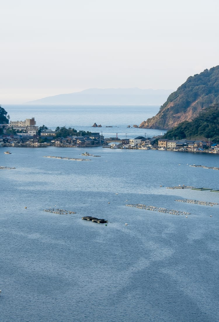 Tsuruga bay