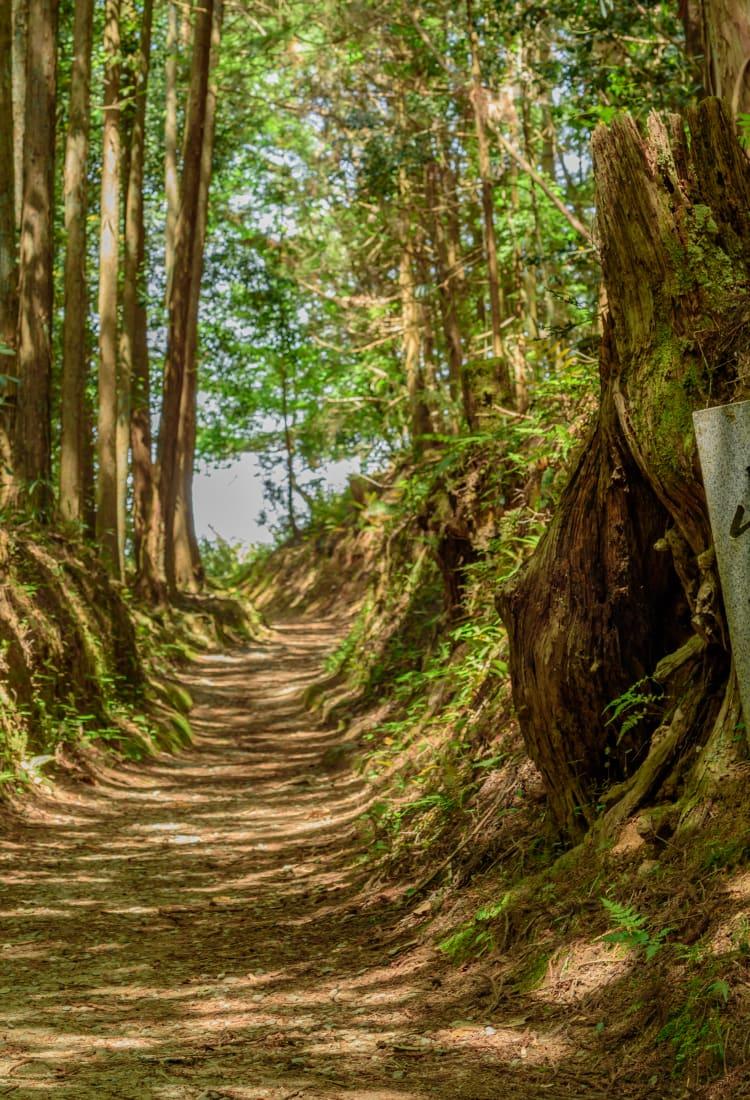 Mt. Miwa