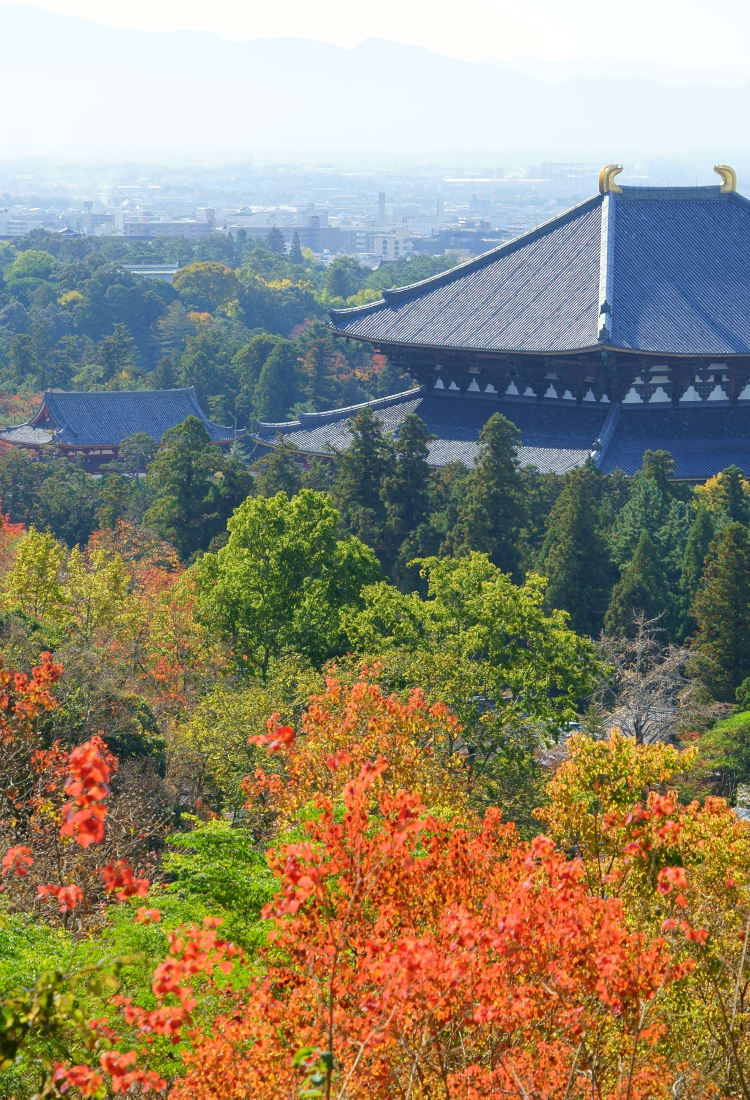 the historic monuments of ancient nara