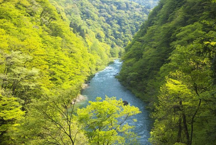 Dakigaeri Gorge