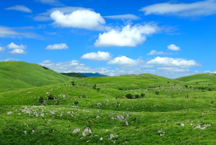 Akiyoshi-dai Plateau Area
