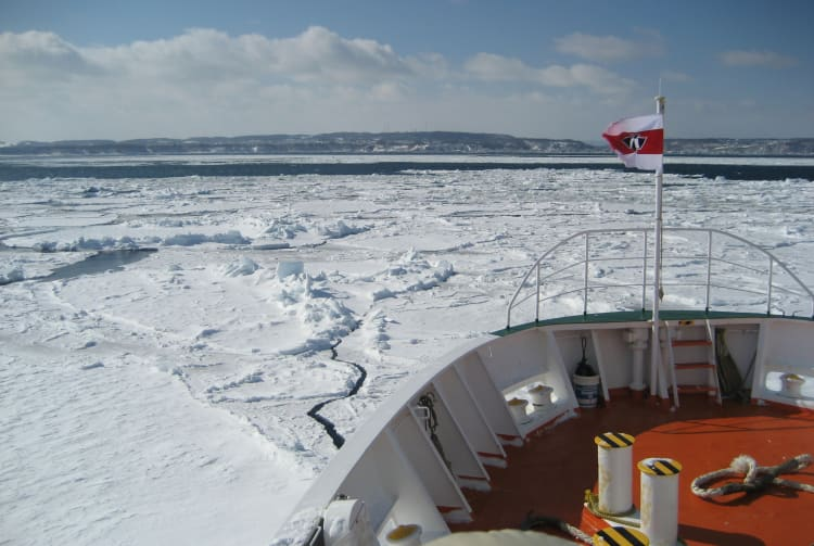 Drift Ice Cruises