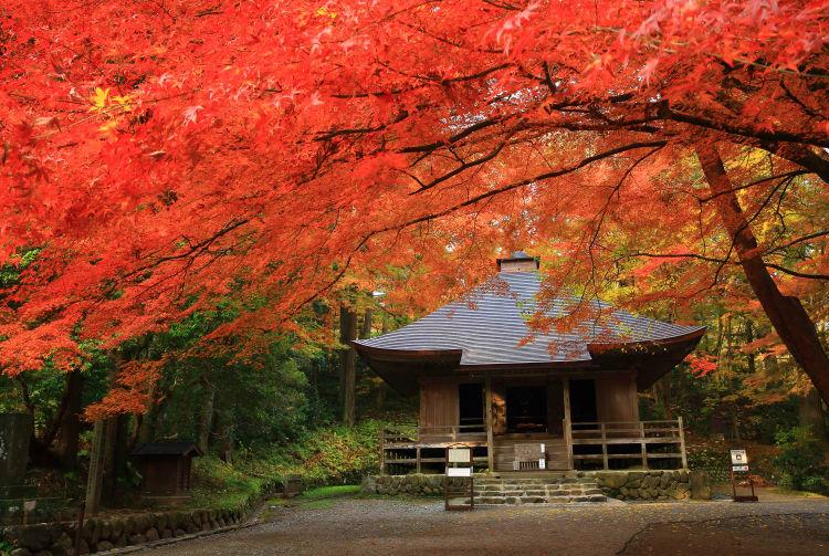 Chuson-ji Temple-AUT