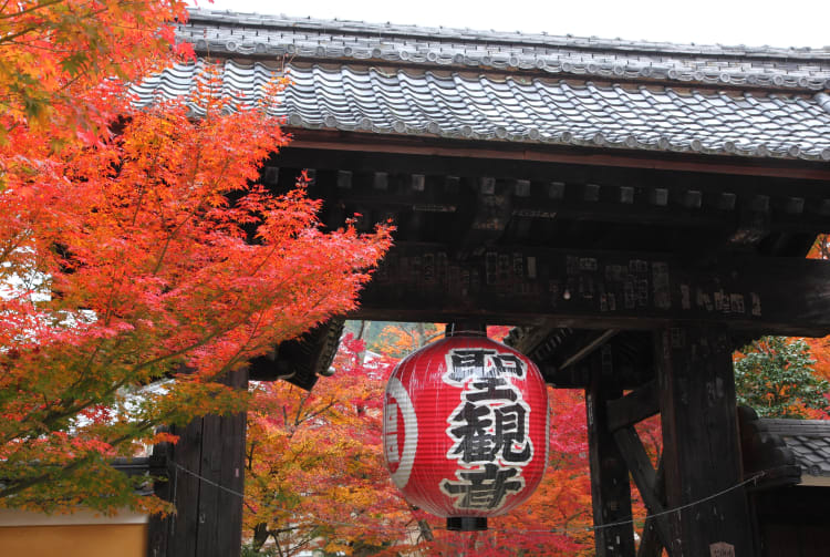 Fall Foliage of Kongorin-ji
