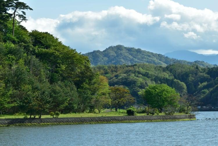Koyama Pond