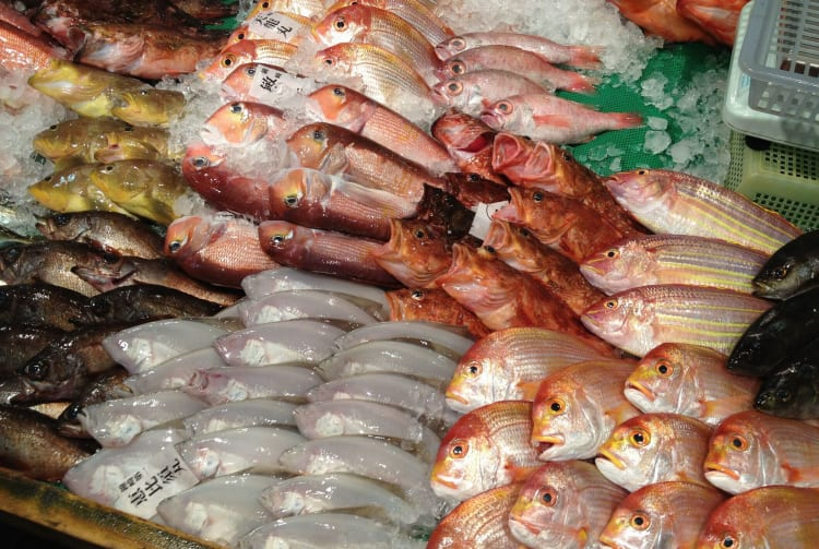 Nagahama Fish Market