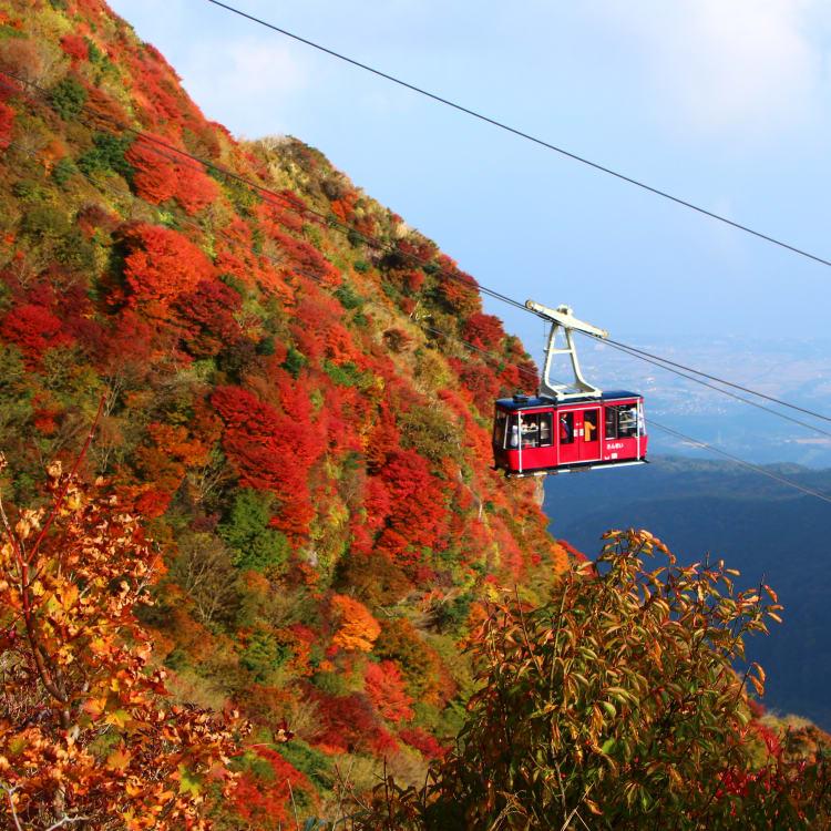 Unzen Nita-touge-red leaves