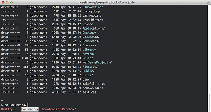 Terminal Using Oh-my-zsh
