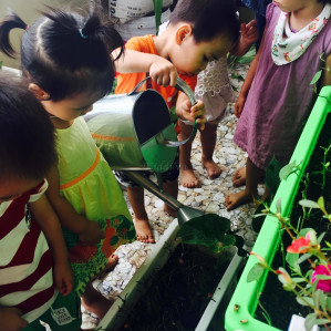 Trường Mầm non Joyful Baby Montessori