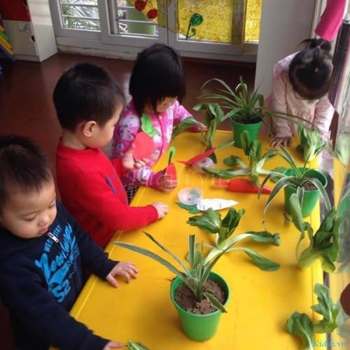 Trường Mầm non Pink House - Trần Quang Diệu