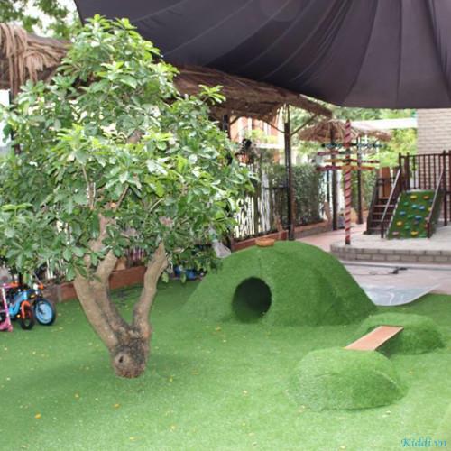 Trường Mầm Non Quốc Tế Wonderkids Montessori - Tân Phú